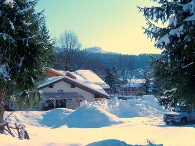 image winterland-jpg